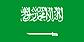 沙特阿拉伯签证办理